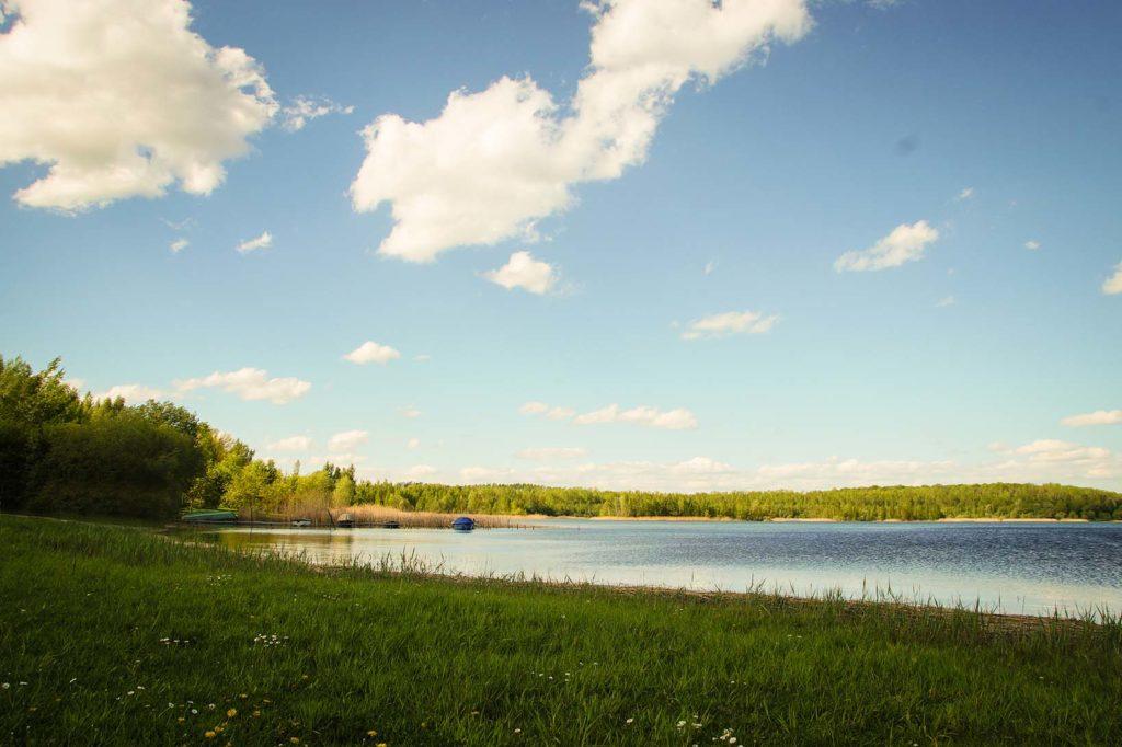 Haselbacher See mit Wiese im Vordergrund. Der Himmel ist strahlend blau mit weißen Wolken. Hinter dem See befindet sich ein Wald.