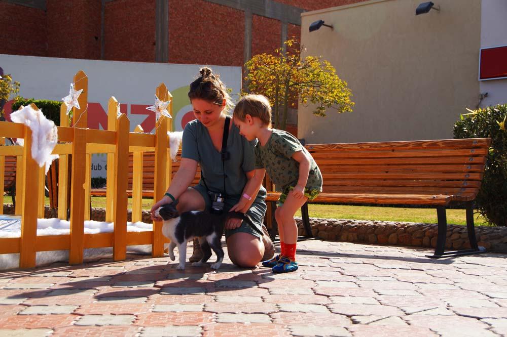 Frau und Kind streicheln eine Katze vor der Senzo Mall in Hurghada.